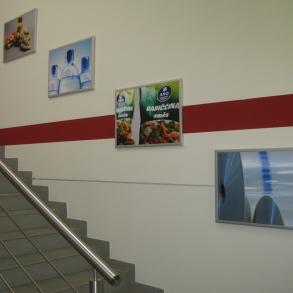 obrazy na schodiště